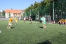 Ikebara vs. FC Krementi 7.9.2013_11